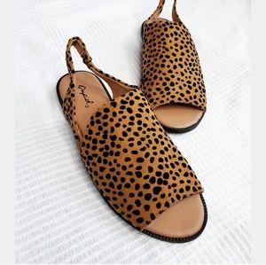 Shoes - //The Erin// leopard print slingback sandal